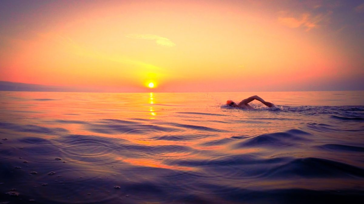 A male swimmer swimming as the sun sets